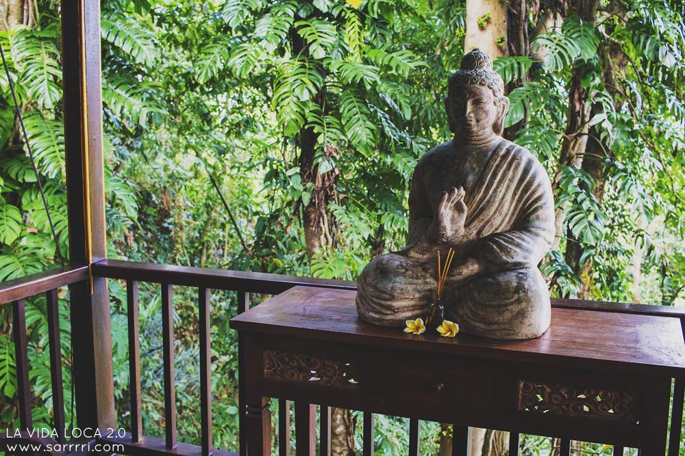 Ubud Bali | La Vida Loca 2.0 Matkablogi | www.sarrrri.com