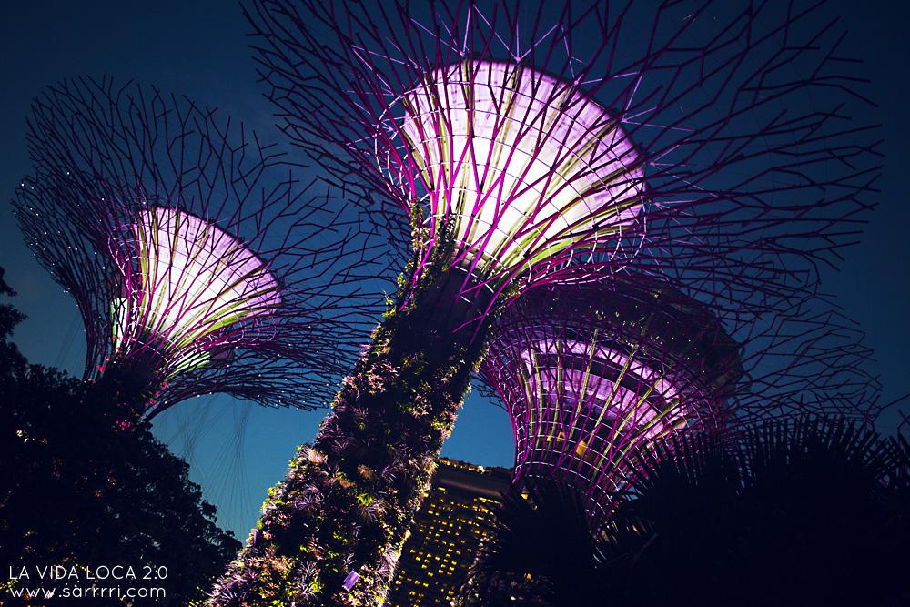 Pitkä välilasku Singaporessa | La Vida Loca 2.0 Matkablogi | www.sarrrri.com