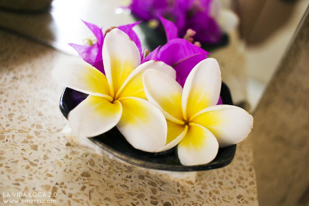 Bali kukka