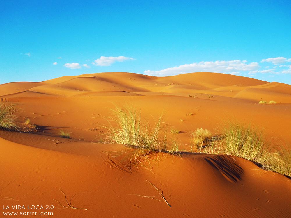 Marokko | La Vida Loca 2.0 Matkablogi | www.sarrrri.com