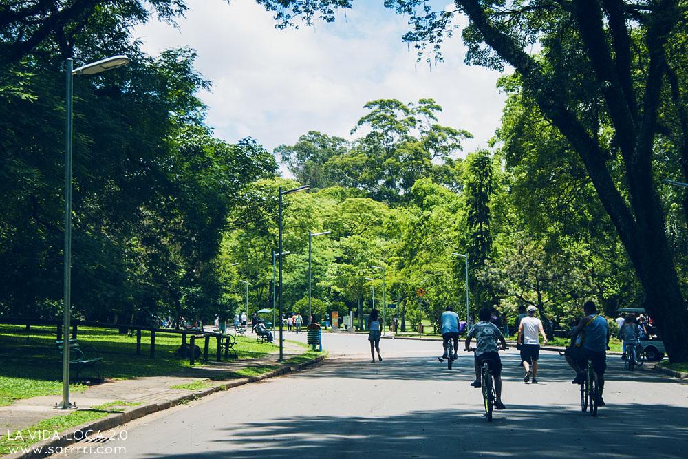 Ibirapuera | La Vida Loca 2.0 Matkablogi | www.sarrrri.com