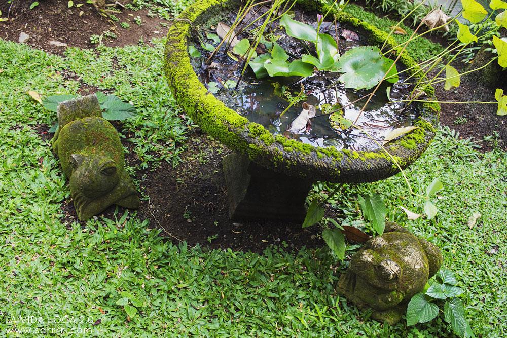 Natura Villas & Spa Ubud | La Vida Loca 2.0 Matkablogi | www.sarrrri.com