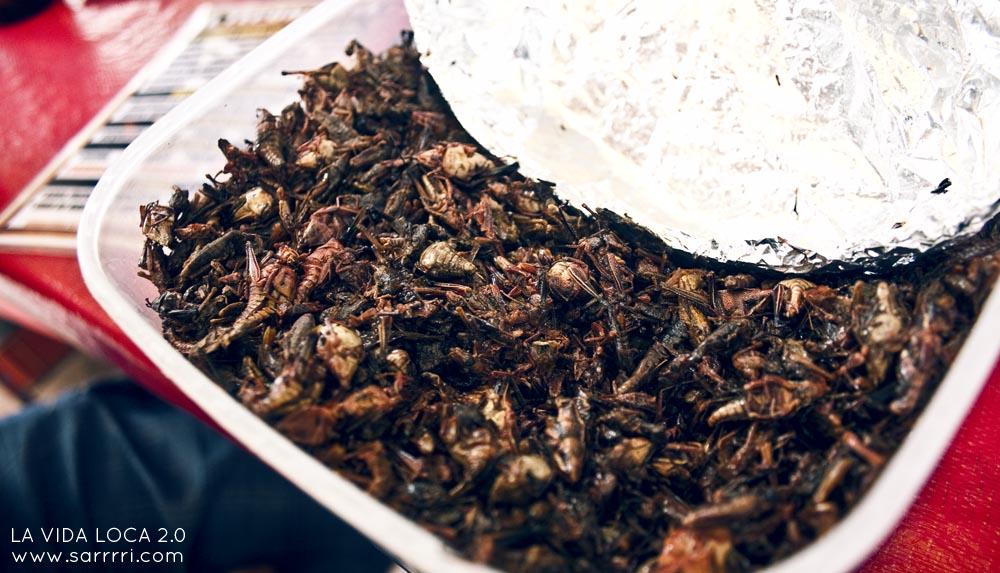 ruokamatkailu friteeratut heinäsirkat